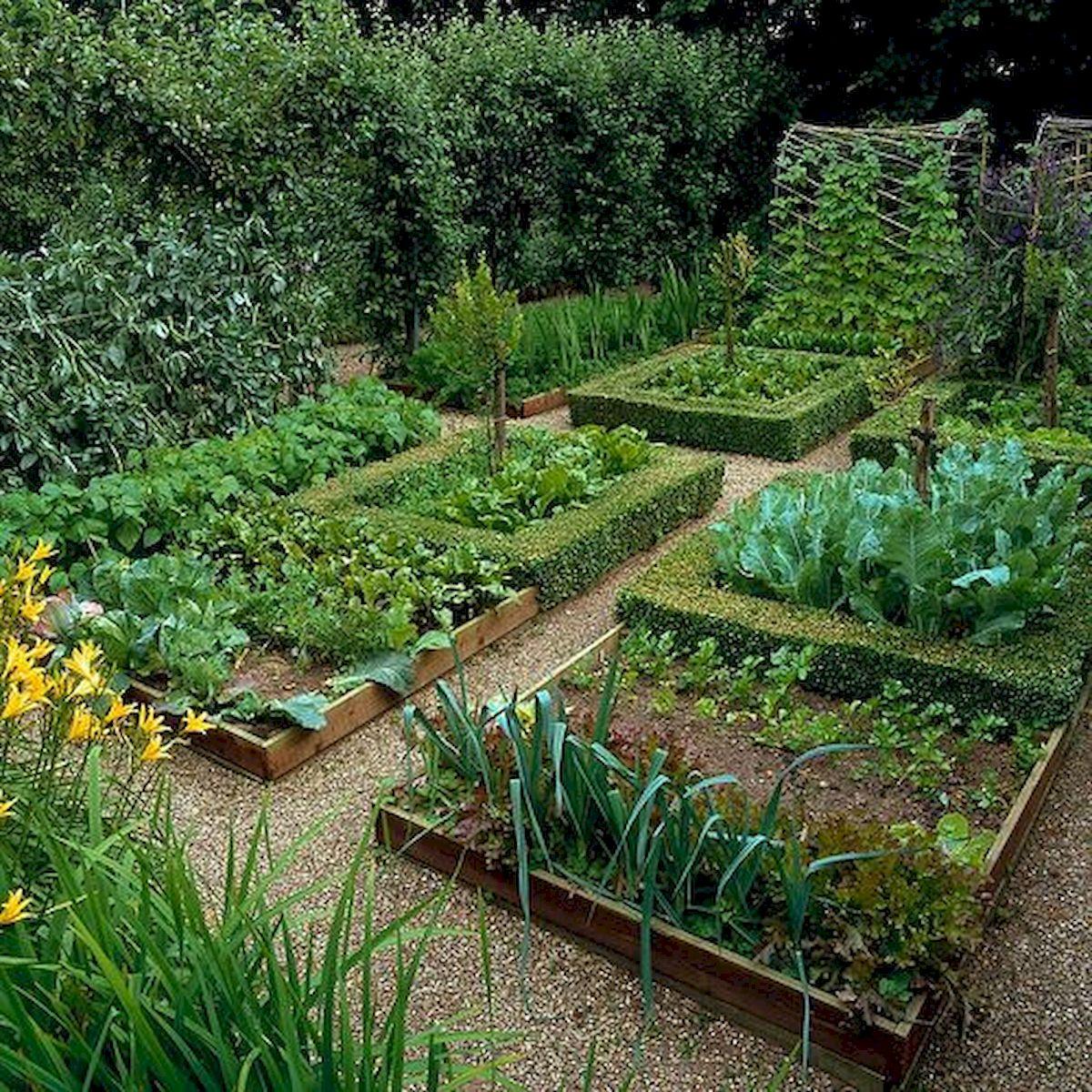 ниши как распланировать огород и сад фото разберемся основных